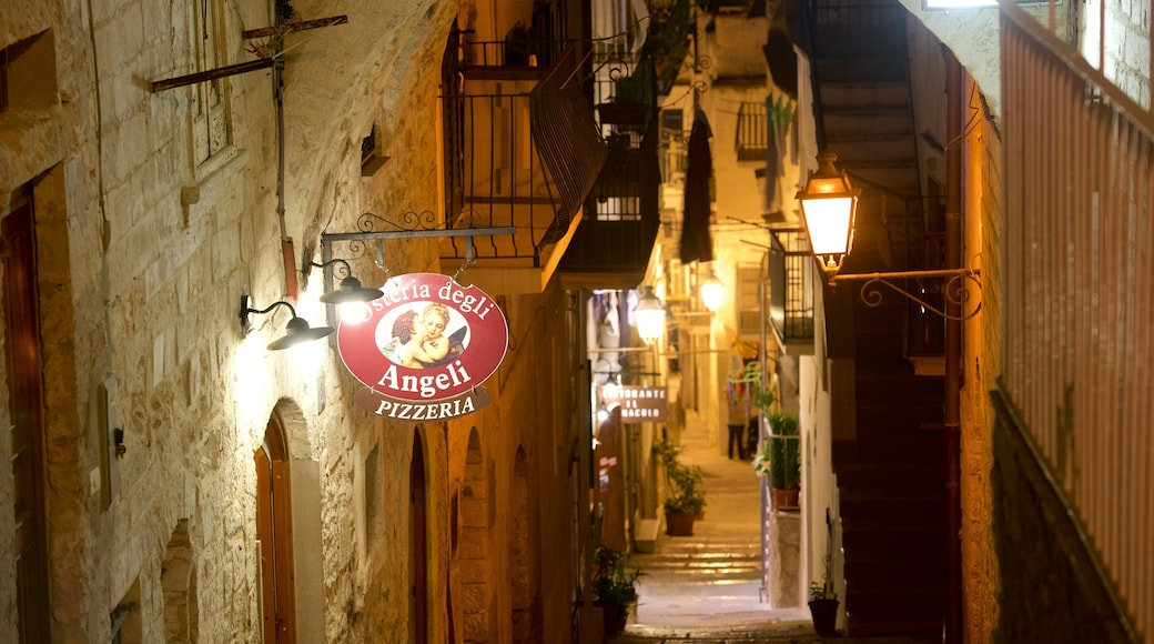 Vieste showing night scenes and signage