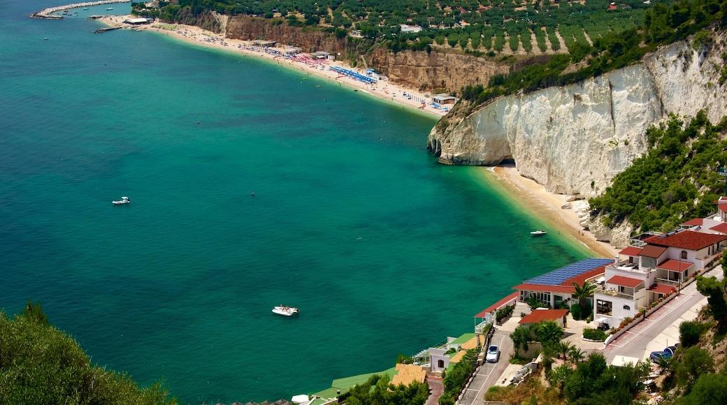 Penisola del Gargano mostrando spiaggia sabbiosa e vista della costa