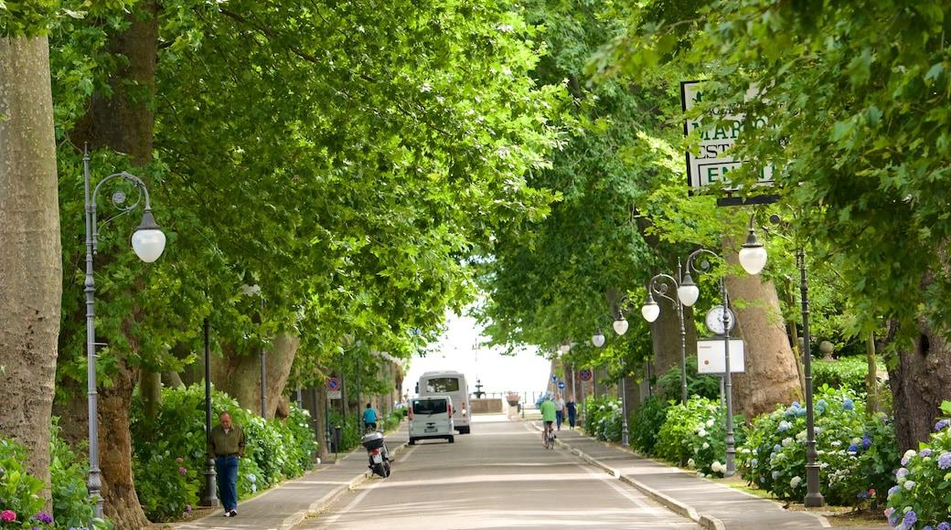 Meer van Bolsena toont een park