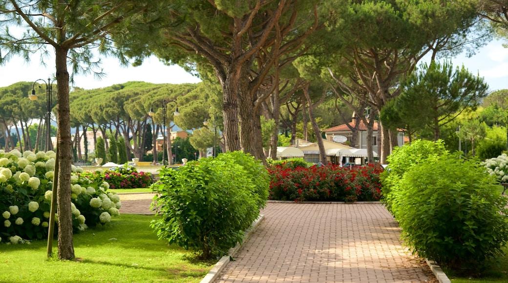 Meer van Bolsena bevat een tuin