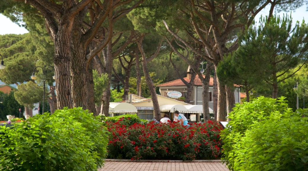 Meer van Bolsena inclusief een tuin
