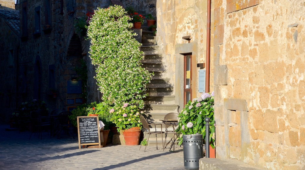 Bagnoregio qui includes patrimoine architectural