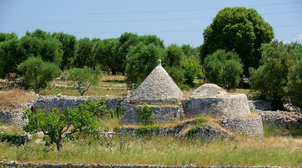 Puglia which includes heritage architecture and building ruins