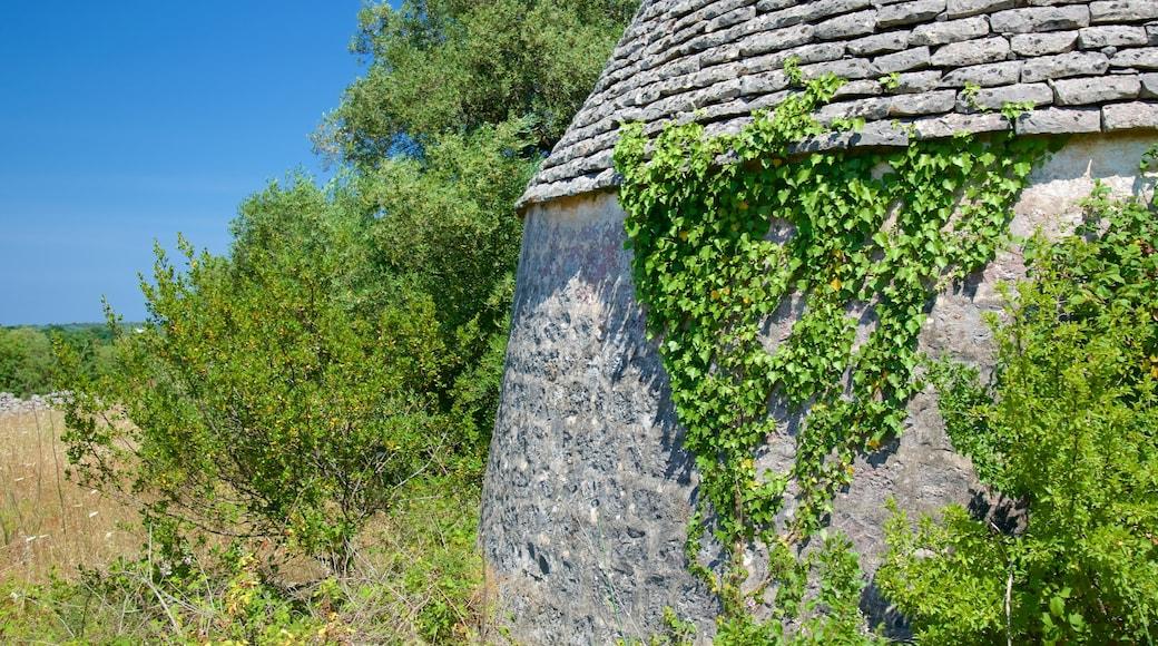 Puglia featuring building ruins