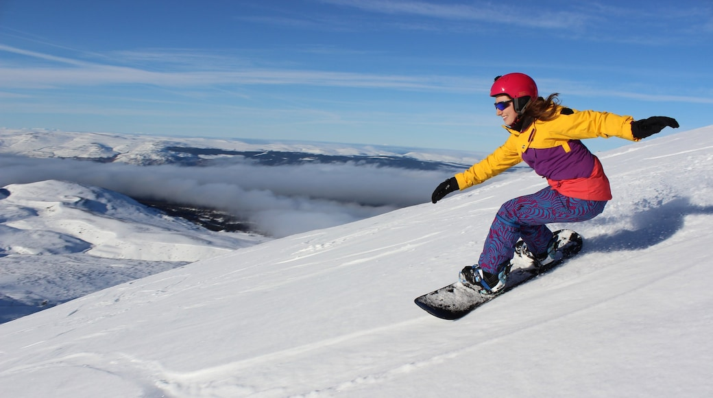 Cairngorm Ski Resort showing snow and snowboarding as well as an individual female