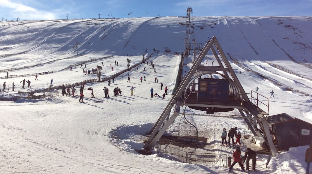 Lecht Ski Resort featuring snow and a gondola
