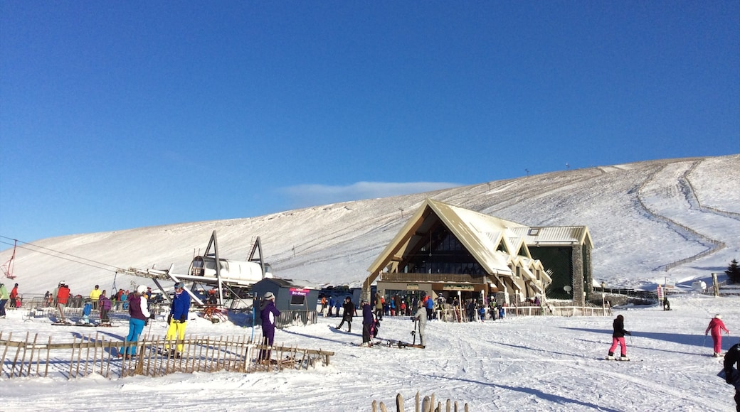 Lecht Ski Resort which includes a gondola and snow