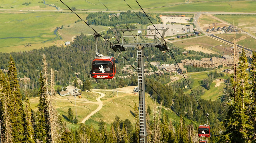 Jackson Hole Mountain Resort which includes a gondola and landscape views