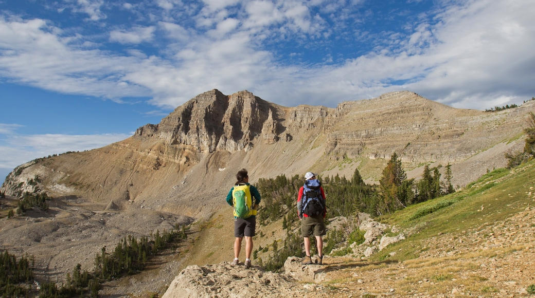 Jackson Hole Mountain Resort featuring mountains and hiking or walking as well as a small group of people