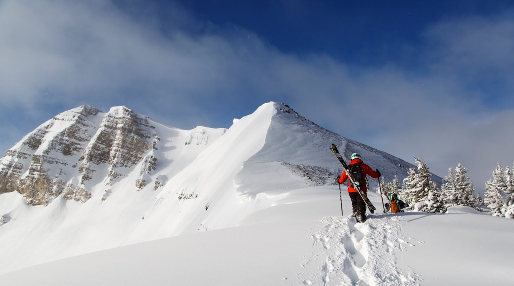 Jackson Hole Mountain Resort showing mountains and snow as well as a small group of people
