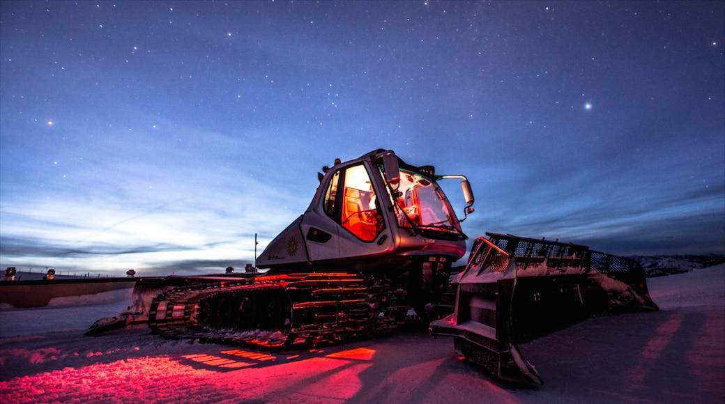 太陽谷滑雪渡假村 呈现出 下雪 和 夜景