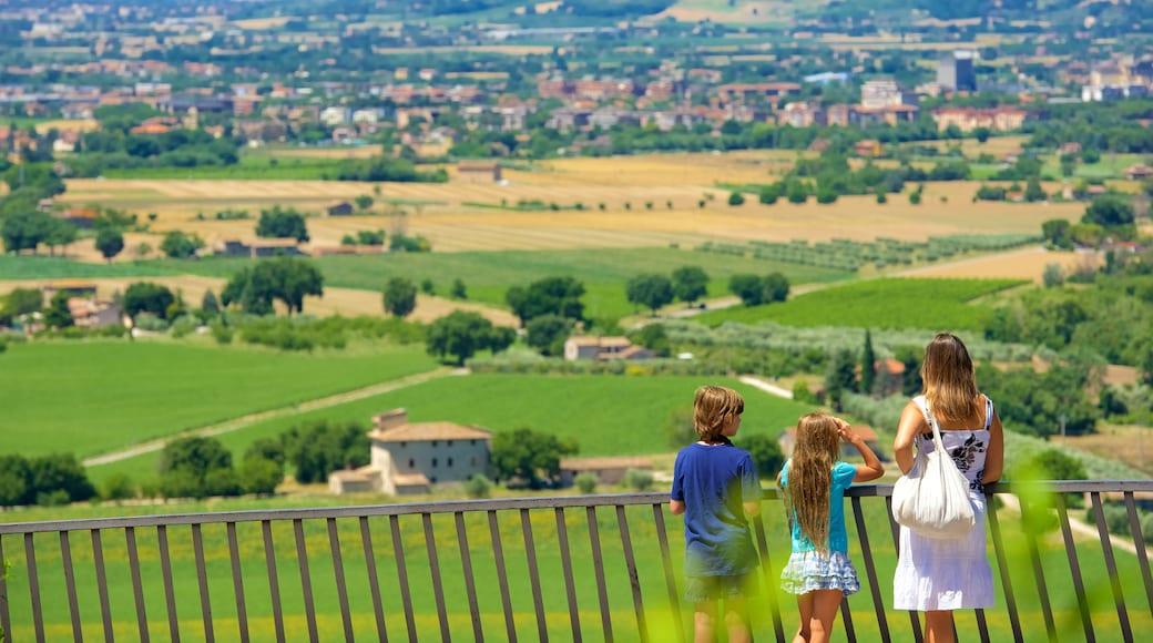 Assisi che include città, terreno coltivato e vista