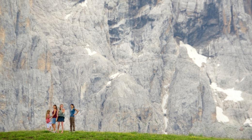 Passo Rolle mostrando paesaggi rilassanti cosi come famiglia