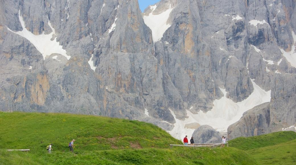 Passo Rolle caratteristiche di escursioni o camminate e paesaggi rilassanti