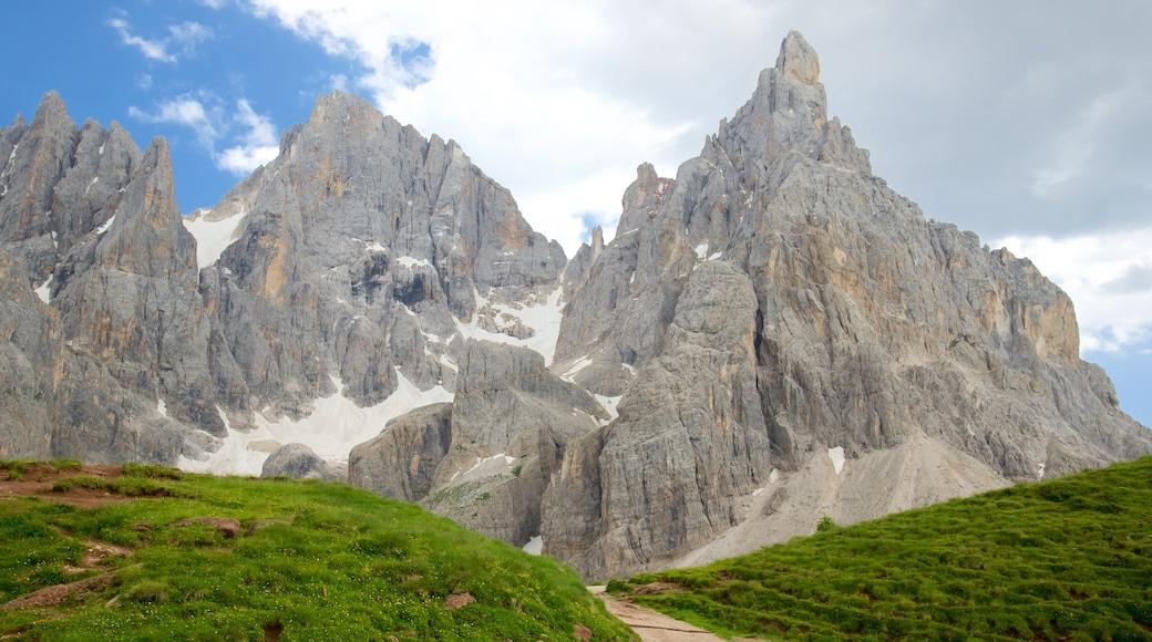 Passo Rolle caratteristiche di montagna