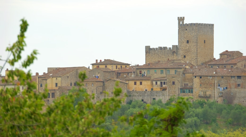 Castellina in Chianti featuring a city
