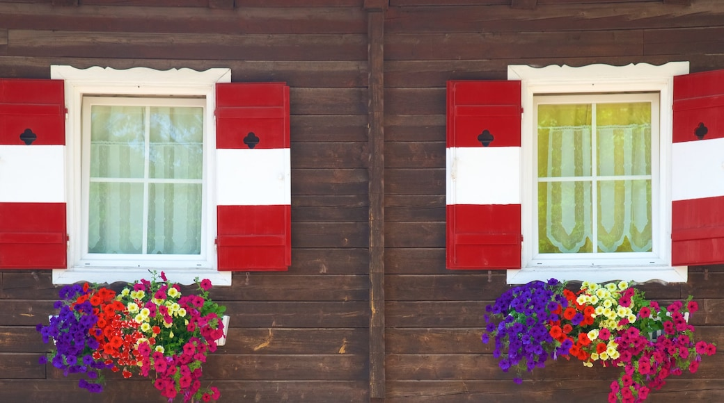 Oberbozen mit einem Blumen und Haus