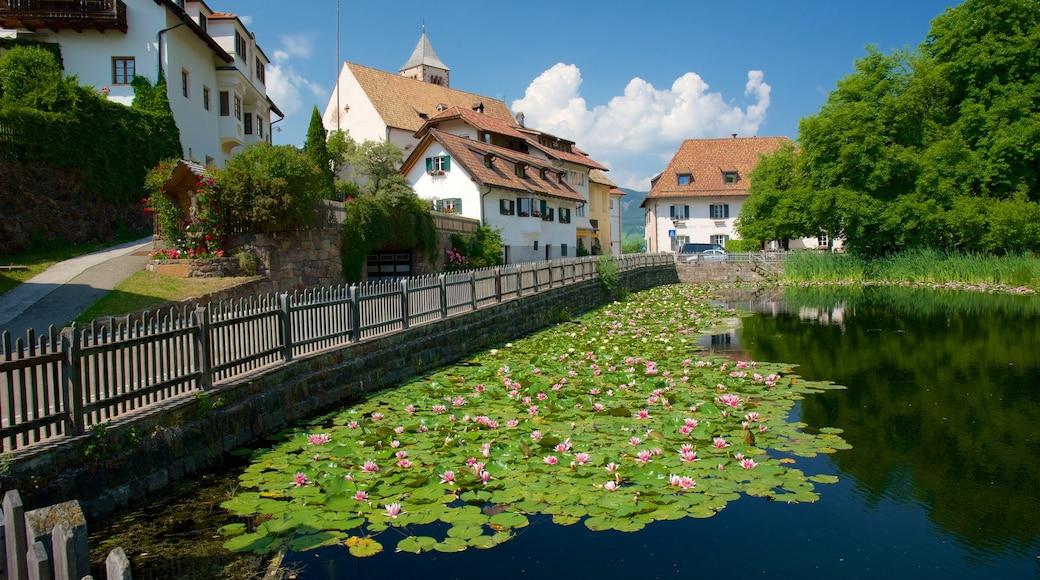 Ritten welches beinhaltet Haus, Blumen und Teich