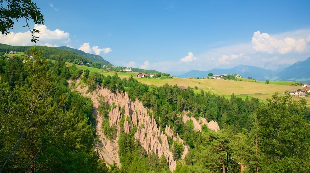 Renon mostrando foresta, terreno coltivato e vista del paesaggio