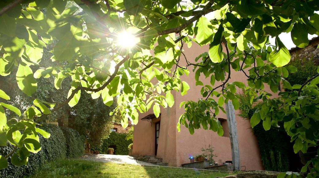 Castellina in Chianti featuring a house