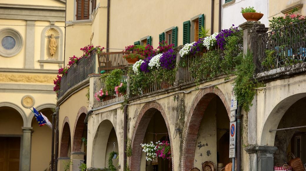 Greve in Chianti che include piccola città o villaggio e fiori