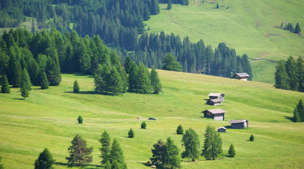 Seiser Alm mit einem Farmland und Landschaften