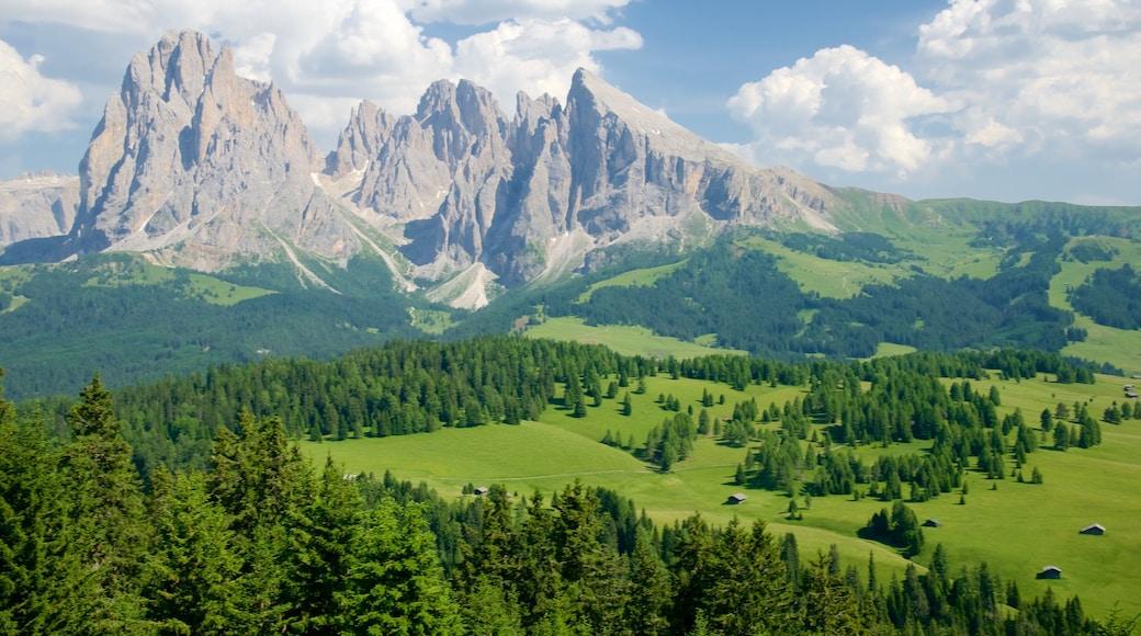 Seiser Alm welches beinhaltet ruhige Szenerie, Landschaften und Berge