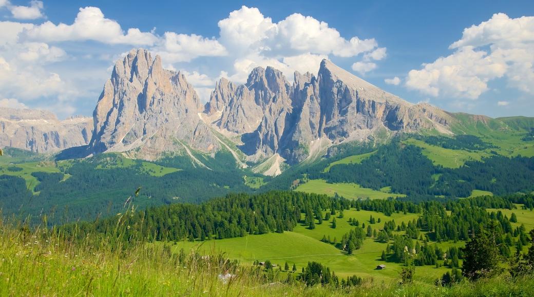 Seiser Alm das einen Landschaften, Berge und ruhige Szenerie