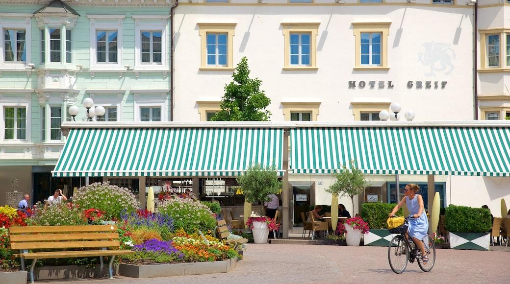 Piazza Walther che include città, bar e caffè e bicicletta