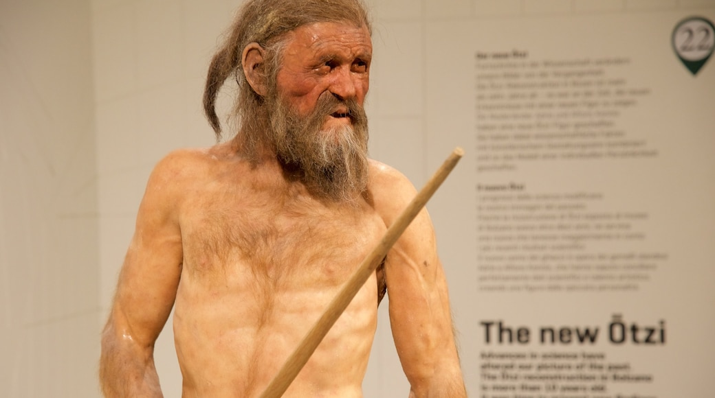 Südtiroler Archäologiemuseum mit einem Innenansichten sowie einzelner Mann