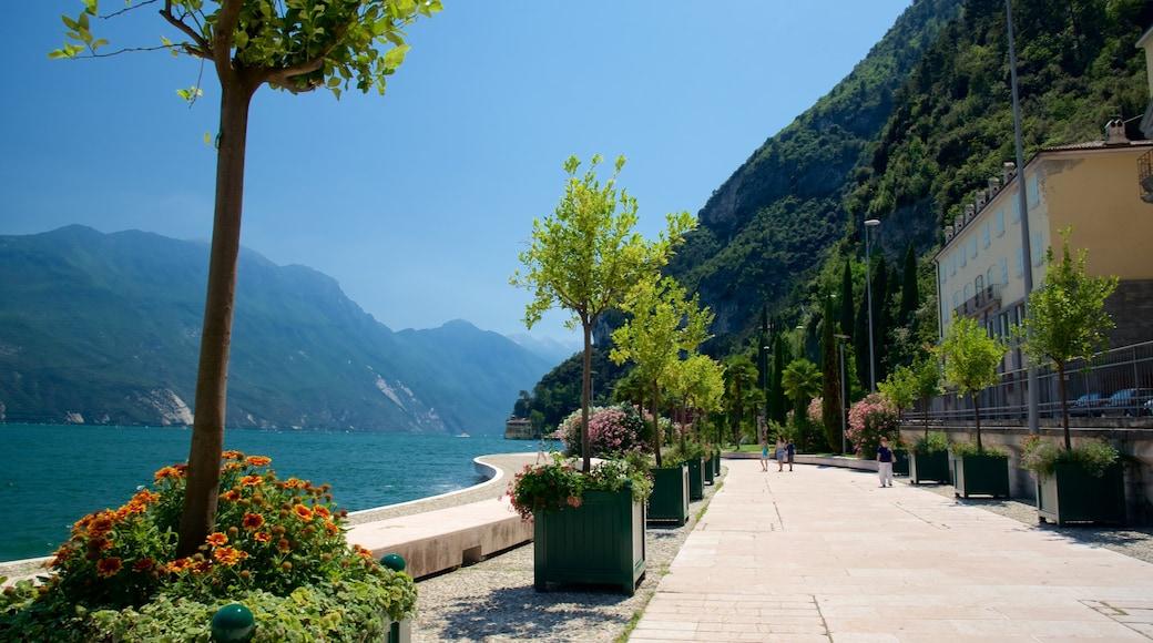 Trentino welches beinhaltet Küstenort und allgemeine Küstenansicht
