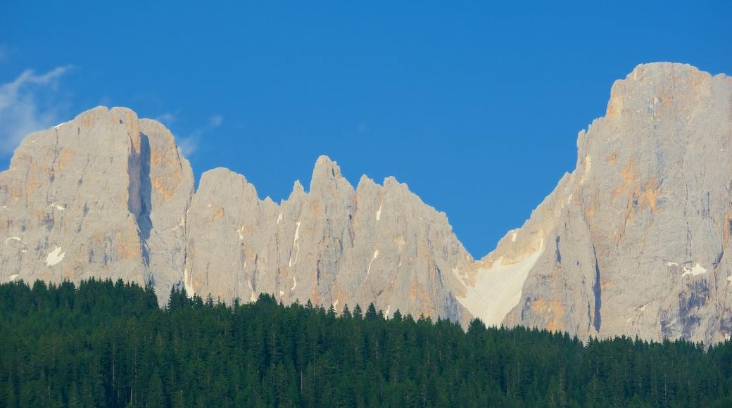Trentino das einen Berge