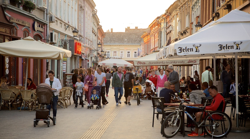 Novi Sad which includes street scenes, outdoor eating and a city