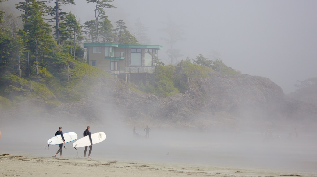Vancouver Island showing mist or fog, surfing and a beach