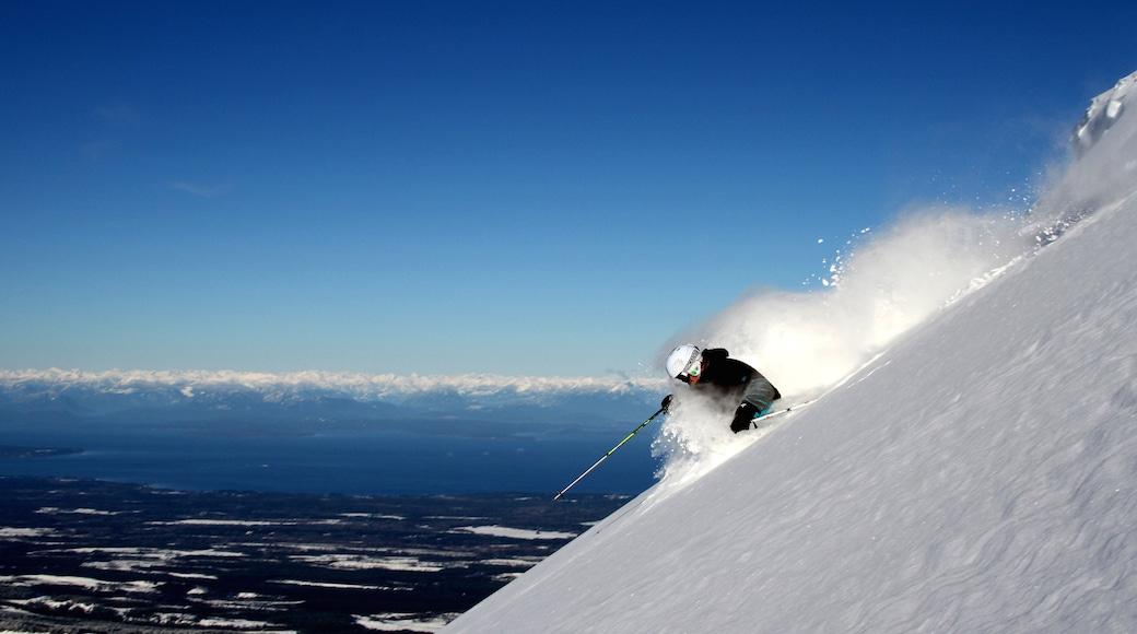 Mount Washington Alpine Resort showing snow skiing and snow