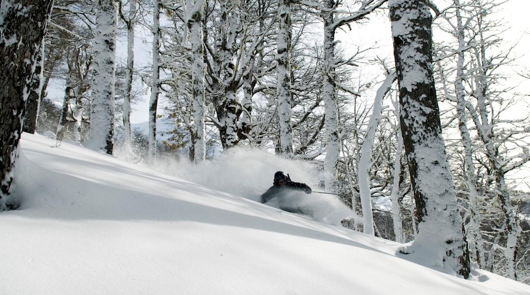 Cerro Bayo showing snow skiing and snow