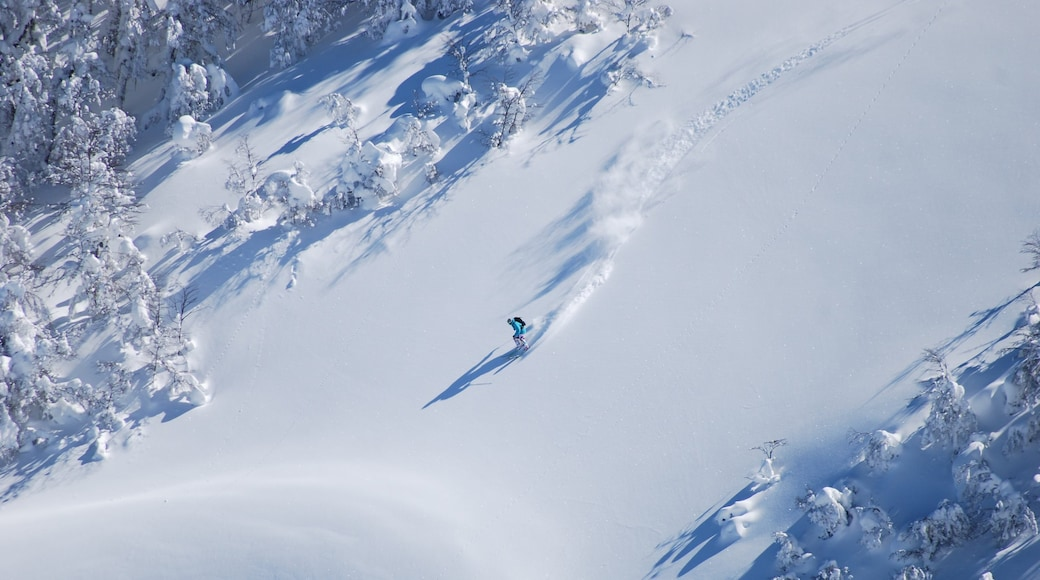 Cerro Bayo featuring snow skiing and snow