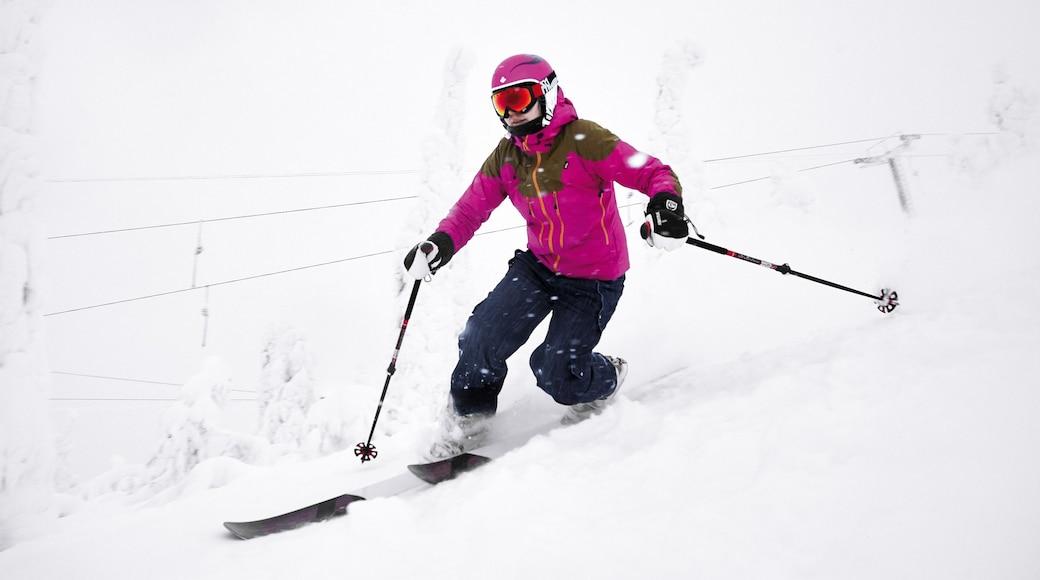 Ruka skidområde som inkluderar snö och utförsåkning