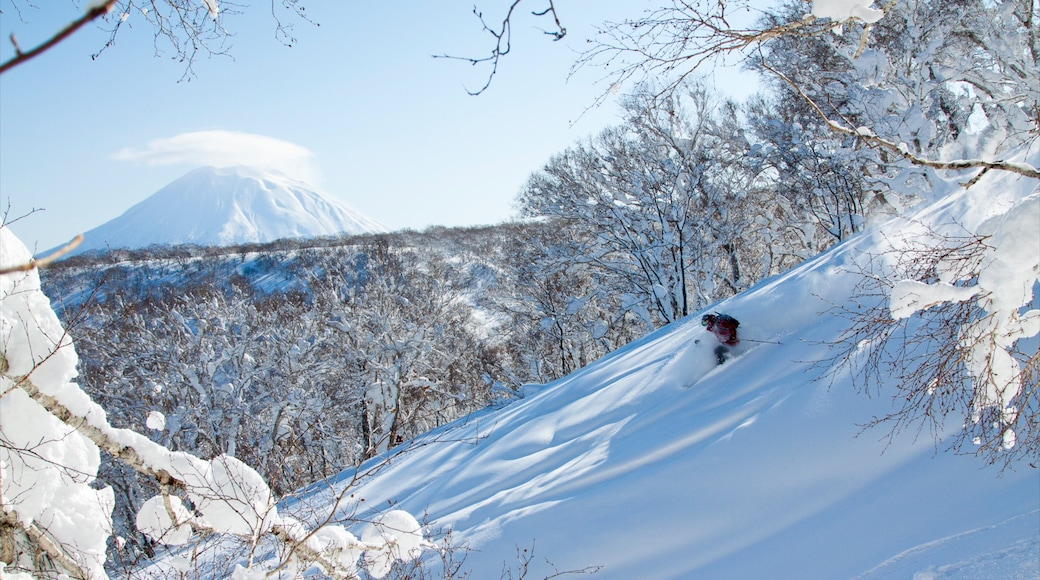 Niseko showing snow, snow skiing and mountains