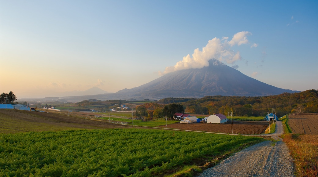 Niseko featuring farmland, landscape views and mountains