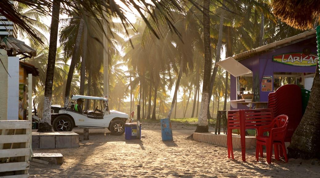 Playa de Maracaipe mostrando una playa, una ciudad costera y un atardecer