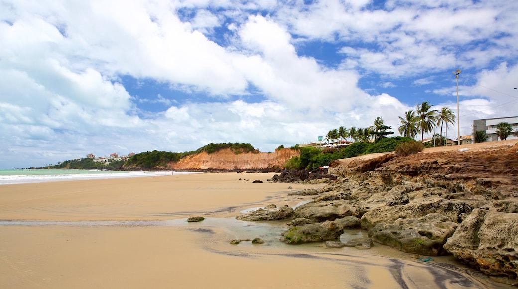 Praia de Cotovelo caracterizando uma cidade litorânea e uma praia de areia