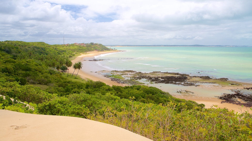 Baia Formosa which includes a beach and landscape views