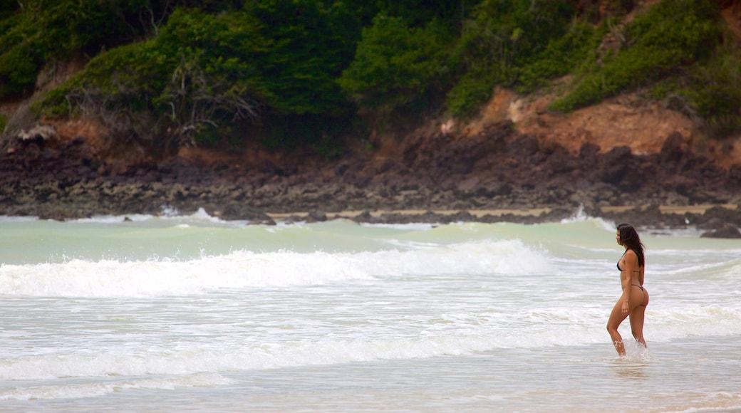 Praia de Cotovelo que inclui litoral acidentado, ondas e paisagens litorâneas