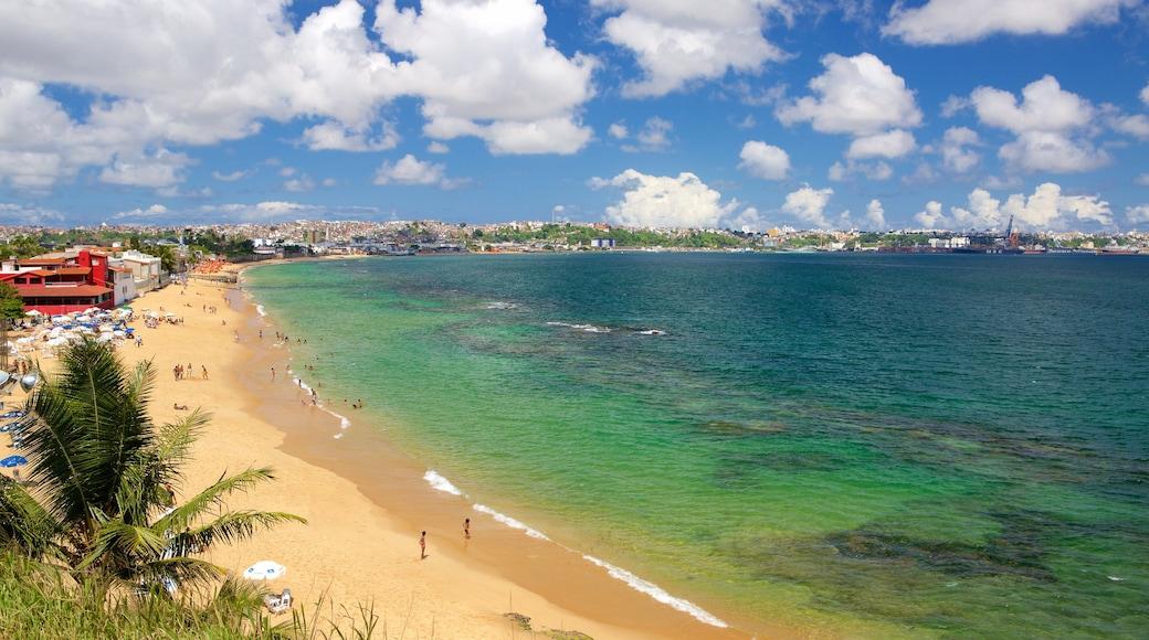 Brasil mostrando una playa, una ciudad costera y vista general a la costa