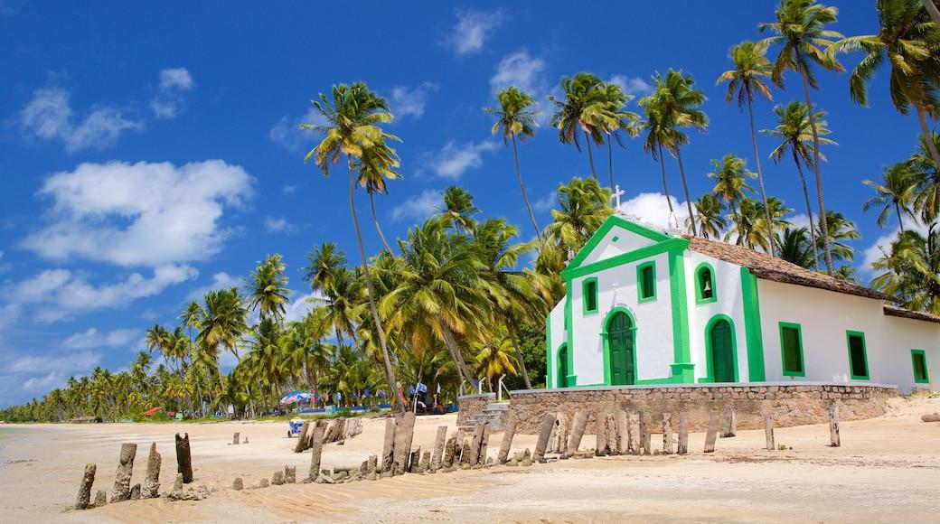 Tamandaré caracterizando cenas tropicais, paisagens litorâneas e uma praia de areia