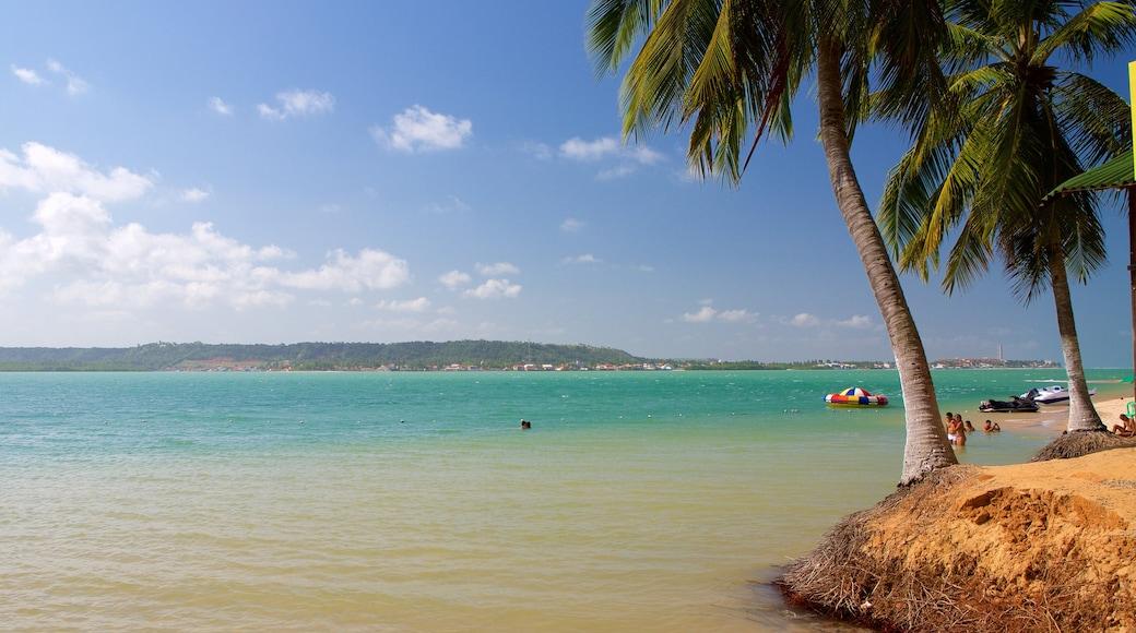 Maceió que incluye vista general a la costa y escenas tropicales