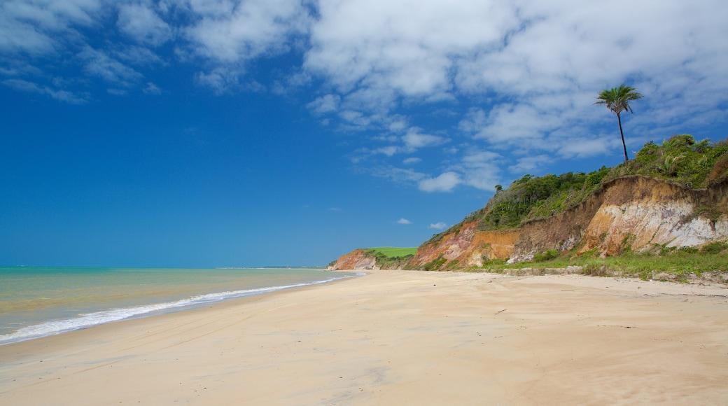 Maceió ofreciendo vista general a la costa, costa escarpada y una playa