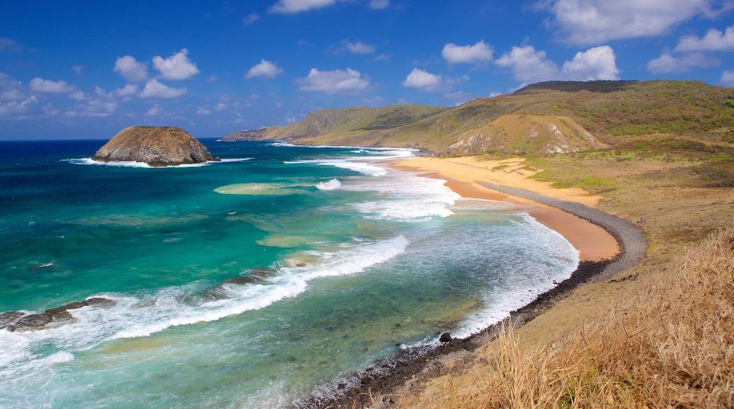 Strand von Leao welches beinhaltet Wellen, Strand und allgemeine Küstenansicht