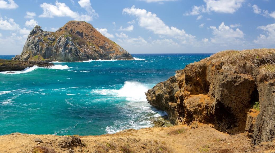 Fernando de Noronha das einen allgemeine Küstenansicht und Felsküste